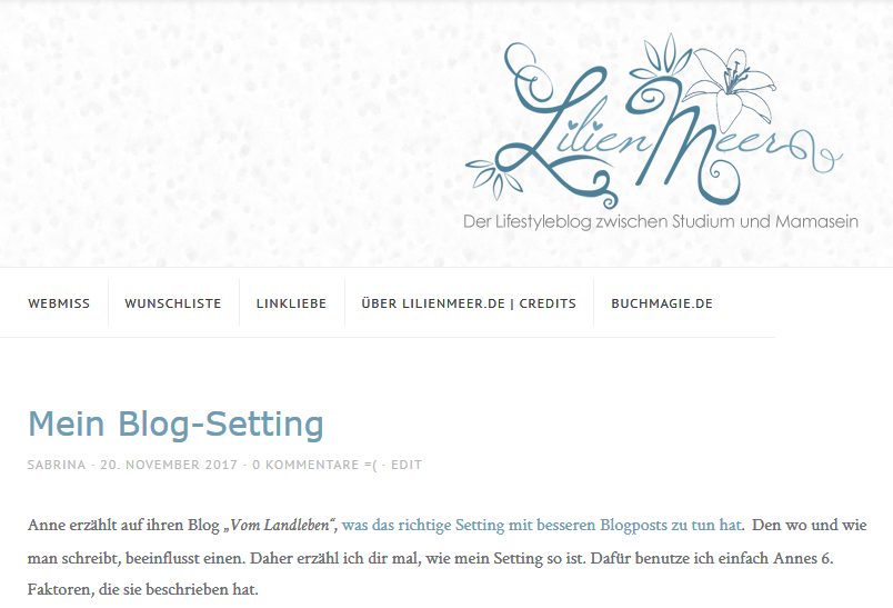 [Bloggen] Mein Blog-Setting