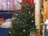 Von Weihnachten und den Weihnachtsbaum